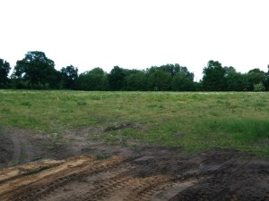 Baugebiet Wiesenpark in Kaltenkirchen